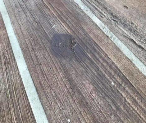 Broom Textured Concrete Wood