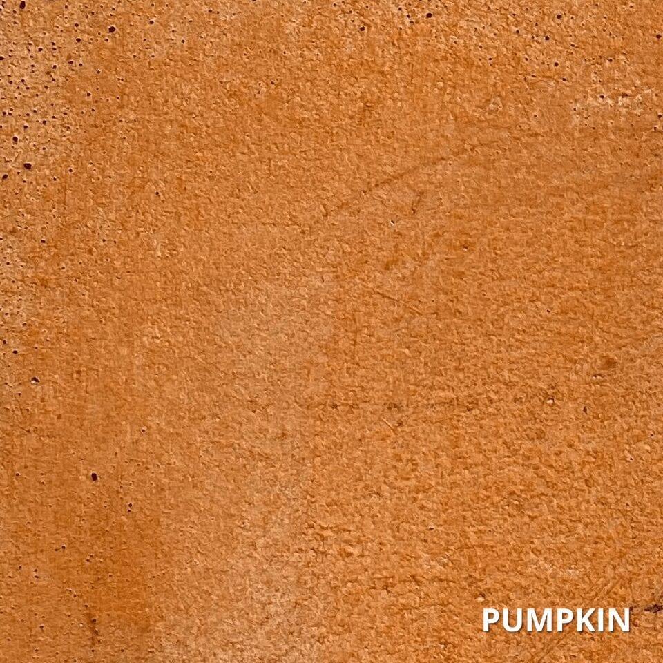 Tinted Sealer Pumpkin Swatch