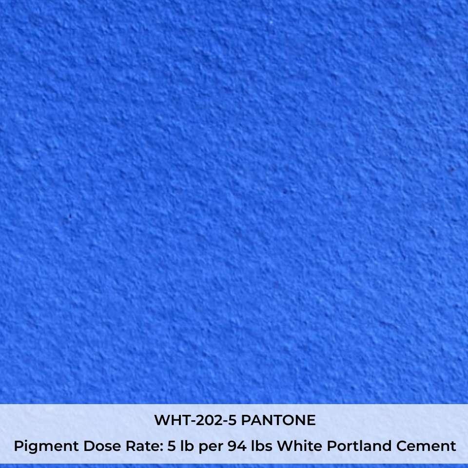 WHT-202-5 PANTONE Pigment