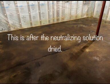 Neutralizing Coffee Brown & Desert Amber